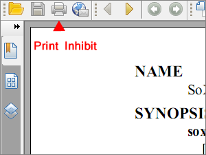 Printing PDF prevented